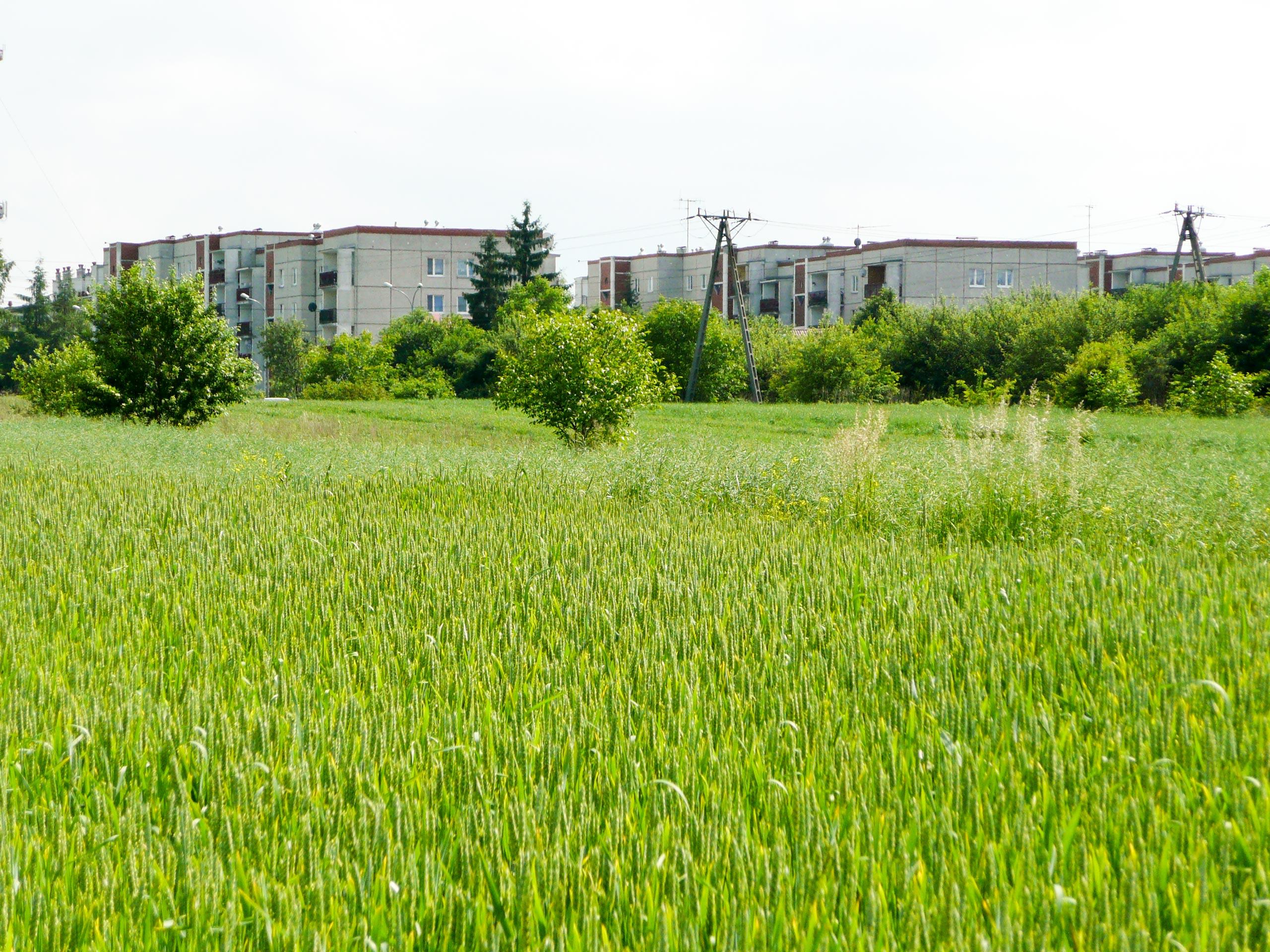 działka budowlana Zamość - działka na sprzedaż - Krzysztof Górski Nieruchomości Zamość
